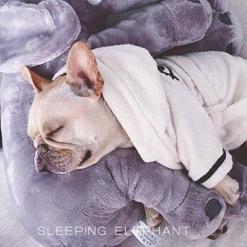 Elephant Plush Sleeping Pillow French Bulldog French Bulldog