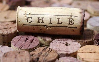 Rượu Vang SYN Selleccionados Cabernet Sauvignon