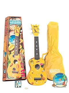 I saw this Uke in the store tonight. So cute!