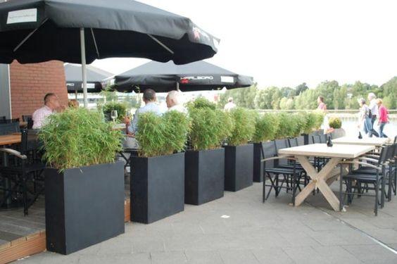 Pflanzkübel Fiberglas Anthrazit als Sichtschutz auf Terrasse vor dem Café, Restaurant und Geschäft. Tolle Idee. Weitere Pflanzkübel aus Fiberglas finden Sie unter https://www.vivanno.de/pflanzkuebel/materialien/fiberglas/