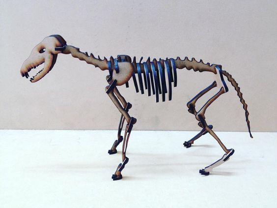Rompecabezas 3D esqueleto de un zorro  #animales #3d #zorro #decoracion #madera #mdf #design #home #decoration #lasercut #lasercutting #cortelaser by dimadeko_1
