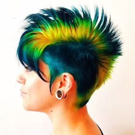 Parrot hairstyles!!! Images and Video Tutorials!