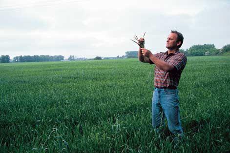 Fitoconsult, erbicid de ultima generatie pentru o agricutura moderna si profitabila  De sute de ani pamantul romanesc este recunoscut pentru calitatile sale desavarsite. Chiar si asa, in prezent, o agricultura moderna presupune atat mijloace tehnologice moderne, cat si o serie de oameni pregatiti si ingrasaminte si erbicid de cea mai buna calitate. Compania Fitoconsult, cu...  https://articole-promo.ro/fitoconsult-erbicid-de-ultima-generatie-pentru-agricutura-moderna-si-pro