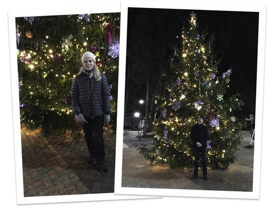 Новогодняя ёлка праздничного Светлогорска в канун Нового 2019 года. Фото: Evgenia Shveda