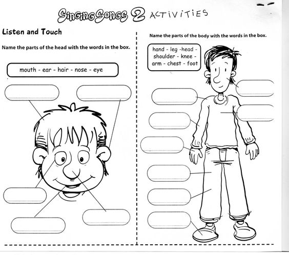 Worksheet Esol Worksheets esl science and google on pinterest this esol worksheet is intended to familiarize the children with parts of their body