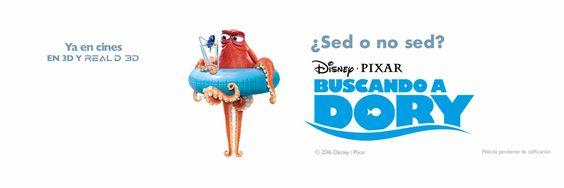 """Disney España on Twitter: """"Cuidado dónde pones los tentáculos. #BuscandoADory https://t.co/lJKdca1zJw"""""""