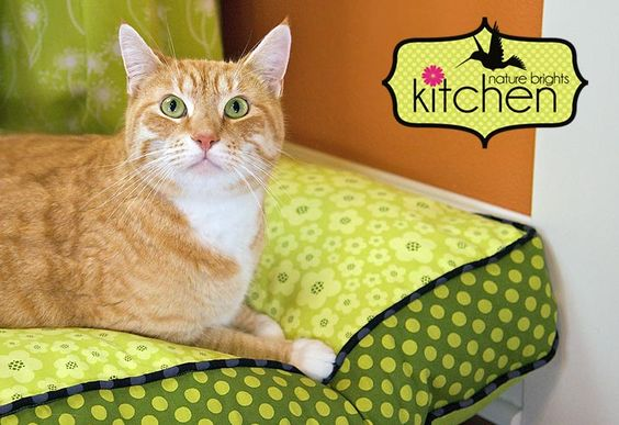 Nature Brights Kitchen: Cool & Cozy Pet Bed
