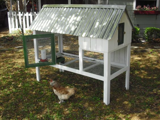 Cute coop deluxe easy build chicken coop diy plans with for Cute chicken coop ideas