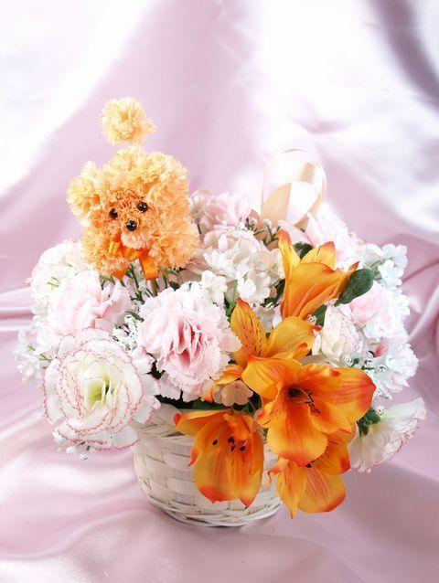 Oh my Fiesta Flowers!: Delicado arreglo con mini perrito. Mascotas florales.