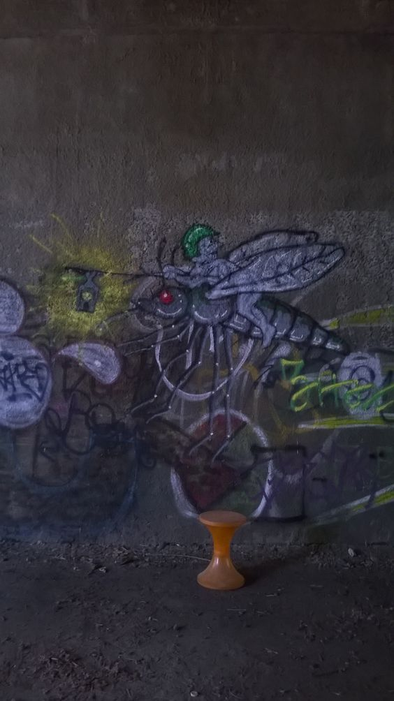 mosquito rider
