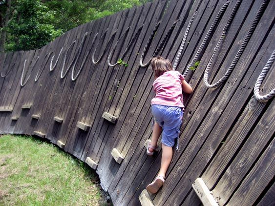 Cool idea for the backyard...if we ever must have a fence, I've found THE ONE!