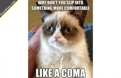 Grumpy cat:  why don't you skip into something more comfortable, like a coma.