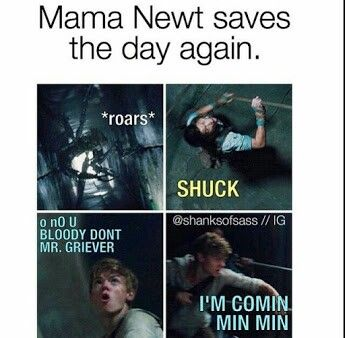 Newt: BLOODY GRIEVERS! TRYNA STEAL MA GLADER BBYS! And my bloody shuck husband! Bitch where