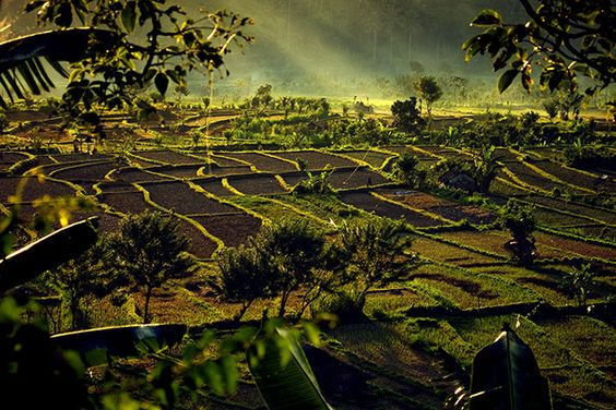 Various landscapes shot across Asia, from Afghanistan to Indonesia.
