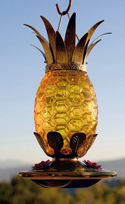 La Pina Caribena Pineapple Hummingbird Feeder: