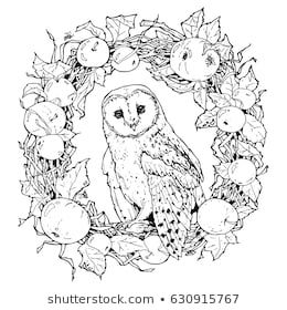 Hand Drawn Decorative Illustration Of Barn Owl Coloring Page With