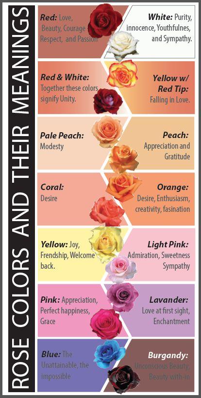 Brittonyas Floral Design Rose Color Meanings Flower Meanings Color Meanings