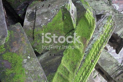 Moss On Angkor Wat Temple Ruins Cambodia Temple Ruins Angkor Angkor Wat