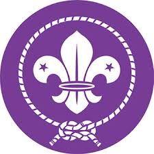 Resultado de imagen para insignias scouts tropa femenina mexico