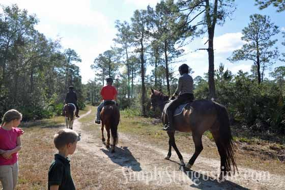 St Augustine Trails: Moses Creek Conservation Area