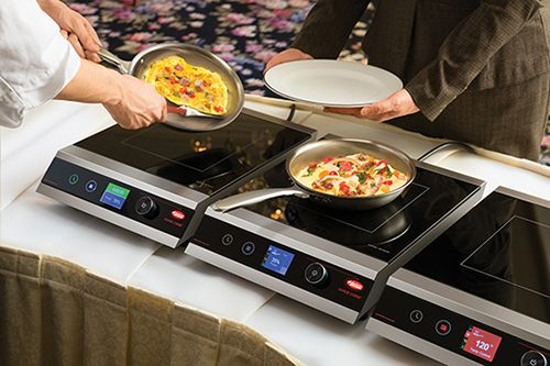 Rapide Cuisine Countertop Induction Range With Images
