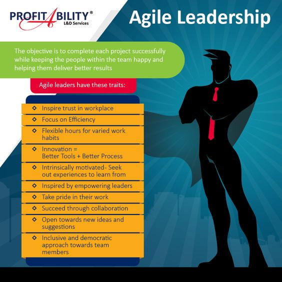 Agile Leadership Infographic