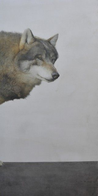 Marzio tamer painting pinterest watercolors wolves for Marzio tamer