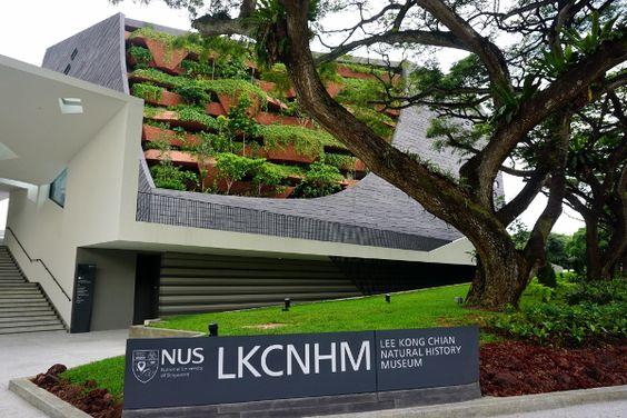 Bảo tàng Lịch sử Tự nhiên Lee Kong Chian