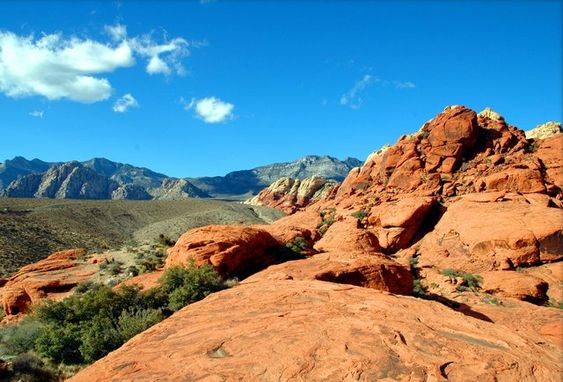 Your Denver Bucket List: 29 Things to Do Before You Die                                                                                                                                                      More