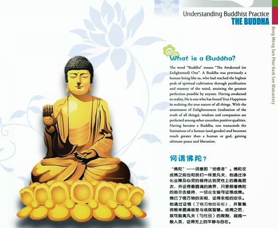 Introduction to Buddhism - ebook What is a Buddha ?     何谓佛陀? Who is the Buddha?    佛陀是谁? What did the Buddha teach?     佛陀的教导 The Four Noble Truths       四圣谛 The Noble Eightfold Path   八正道 The Five Precepts              五戒 - See more at: http://aristeinhk.blogspot.sg/2014/08/introduction-to-buddhism-ebook.html