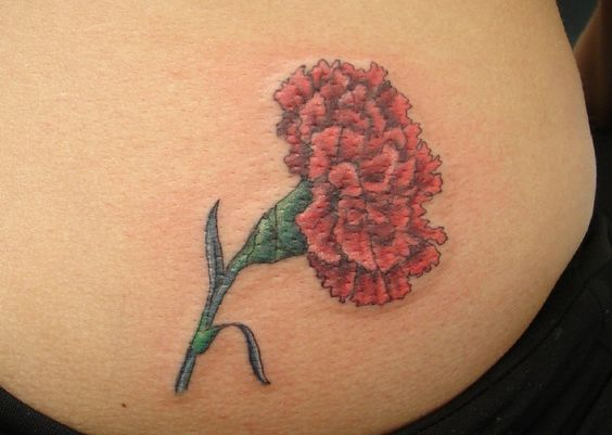 Carnation tattoo red carnation and birth flowers on pinterest for Red carnation tattoo