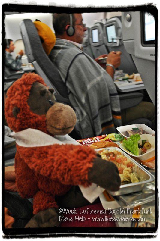Marco Polo comiendo en Frankfurt Airport (FRA)