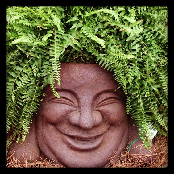 Over-sized Buddha Face figure for the gardener with a sense of humor! Not currently available for sale, no shipping available.: