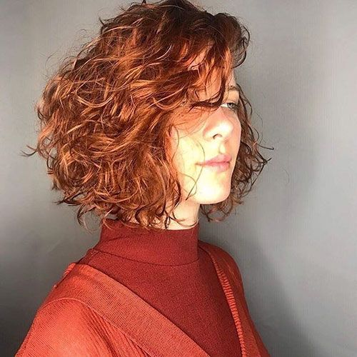 24 Short Curly Red Hair In 2020 Short Red Hair Short Curly Hair Curly Hair Styles