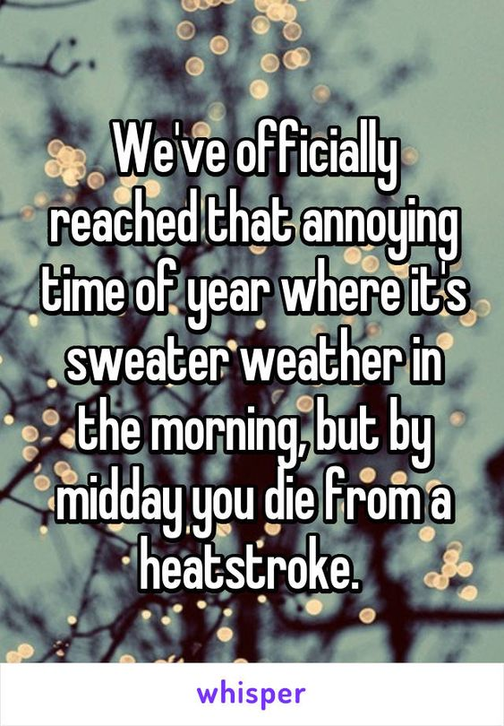 We've officially reached that annoying time of year where it's sweater weather…:
