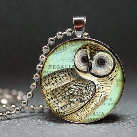 Vintage Owl Collage Domed Resin Pendant from artyscapes on Etsy