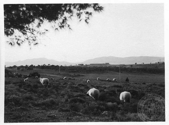 ΑΤΤΙΚΗ ΤΟΥΡΚΟΒΟΥΝΙΑ 1932 ΦΩΤΟΓΡΑΦΙΑ Dorothy Burr Thompson