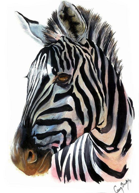 Surdoue Ou Zebre Animaux D Aquarelle Peinture Zebre Peintures