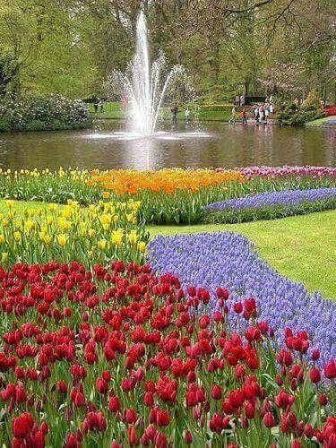 噴水と綺麗で美しい花畑