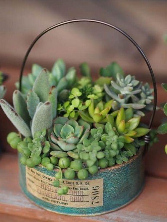Ideas para hacer pequeños terrarios - Manualidades #suculentas #macetas #reciclaje #terrarios