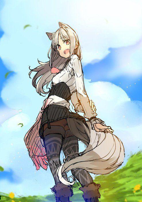 Wolf Parchment New Theory Spice Wolf Light Novels Get Manga
