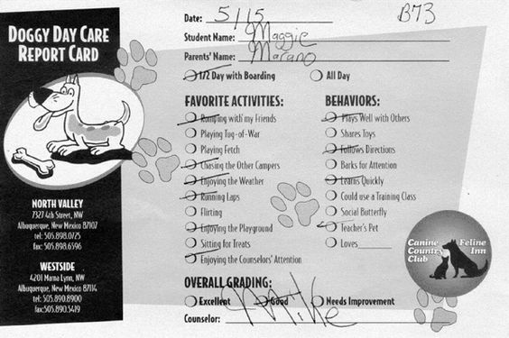 Dog Report Card Google Search Dog Daycare Dog Boarding Kennels Report Card Template
