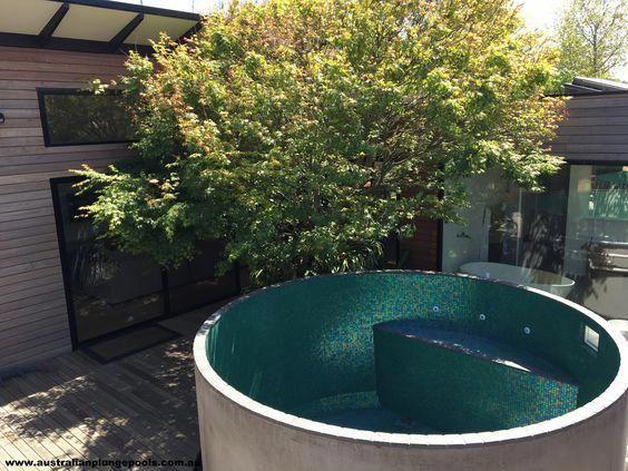 3 45m Australian Plunge Pool Poollandscape Backyard Pool Plunge Pool Pool Landscaping