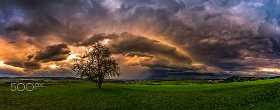 *here comes the danger* by Ralf Thomas on 500px