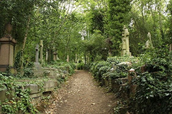 Beautiful, Highgate Cemetery And Gothic On Pinterest