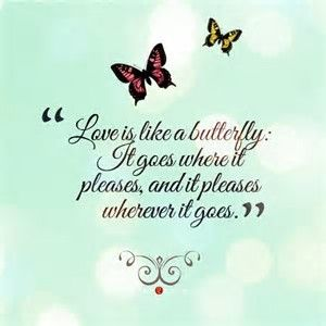 Image result for butterfly quote