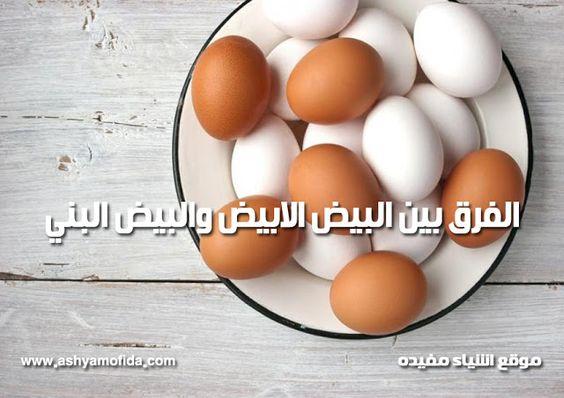 البيض الابيض والبيض البني