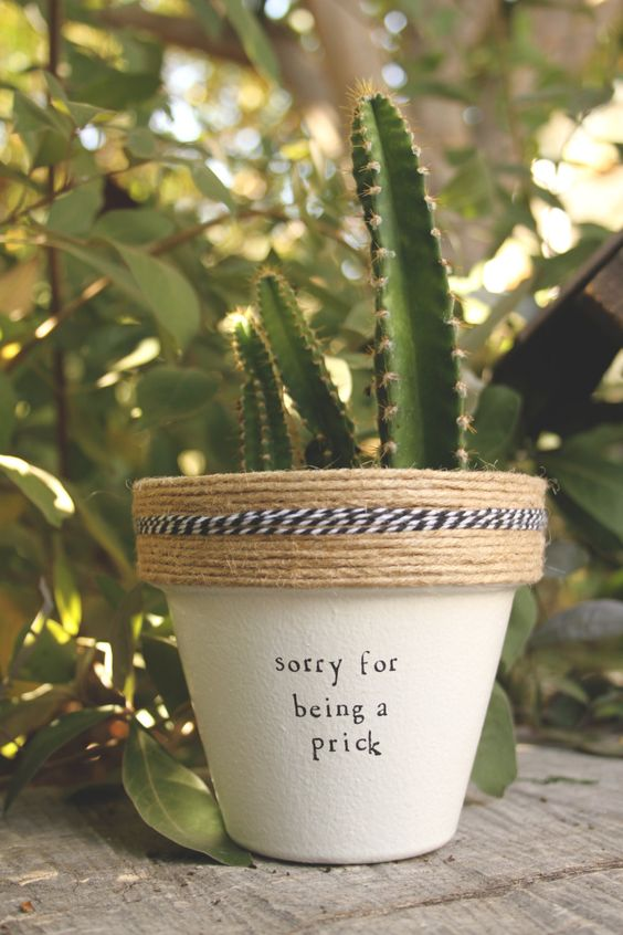 Sorry for Being a Prick by PlantPuns on Etsy: