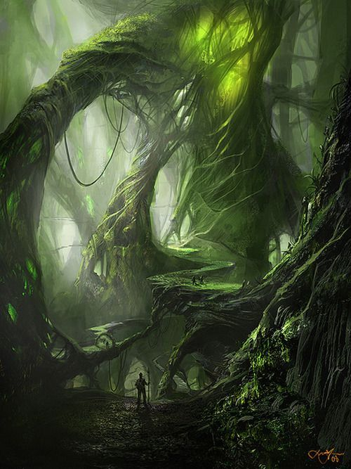 The scarce green light that has the courage to seep through the thick strangely shaped trees of this forest is only one of the effects that make this place look so much like a dream and yet so much like a nightmare -Zwaluws- #FantasyLandscape