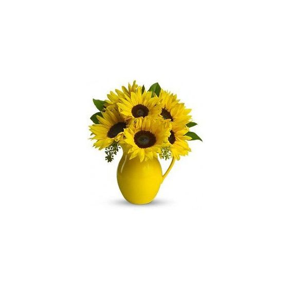 Teleflora's Sunny Day Pitcher of Sun Flowers (225 BRL) ❤ liked on Polyvore featuring home, home decor, floral decor, flowers, decor, yellow, fiori, prop, yellow bouquet and flower stem